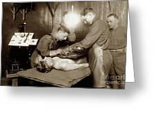 The X-ray Department Base Hospital 34, U. S. A., Nantes, France,  1918 Greeting Card