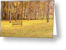 The Yellow Leaves Of Fall Carpet The Ground Of A Ginkgo Biloba Grove. Cm3 Greeting Card