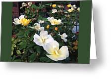 The Yellow Roses Of Fulton Street Greeting Card