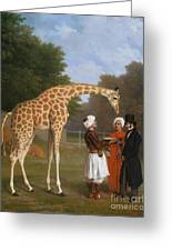 The Zoological Garden Greeting Card