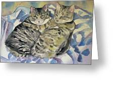 Theo And Franklin Greeting Card