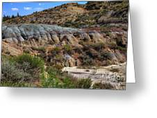 Theodore Roosevelt National Park #1 Greeting Card