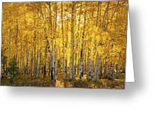 There's Gold In Them Woods  Greeting Card