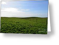 Thick Grass Field Abutting The Cliff's Of Moher In Ireland Greeting Card
