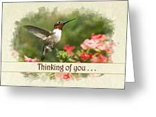 Thinking Of You Hummingbird Garden Jewel Greeting Card Greeting Card