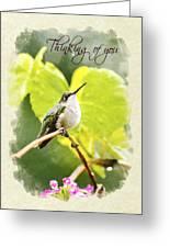 Thinking Of You Hummingbird In The Rain Greeting Card Greeting Card