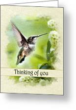 Thinking Of You Peaceful Love Hummingbird Greeting Card Greeting Card