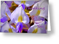 Thinking Of You Wisteria Greeting Card