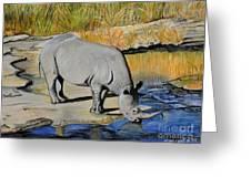 Thirsty Rhino Greeting Card