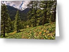 This Is Washington State No.1 - Klipchuck Greeting Card by Paul W Sharpe Aka Wizard of Wonders