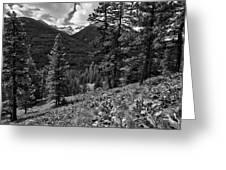 This Is Washington State No.1b - Klipchuck Greeting Card by Paul W Sharpe Aka Wizard of Wonders