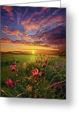 This Life Is A Gift For Everyone Greeting Card