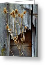 Thistle And Wood Greeting Card