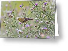 Thistle Bender Greeting Card