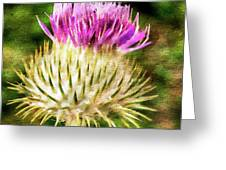 Thistle - The Flower Of Scotland Watercolour Effect. Greeting Card