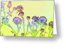 Thistles Under The Sun Greeting Card