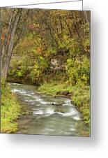 Thompson Creek Autumn 1 B Greeting Card