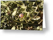 Thorn Love Greeting Card