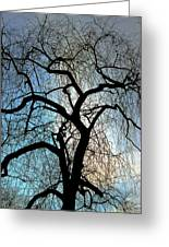 Those Gnarled Branches Greeting Card