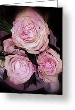 Three Beautiful Roses Greeting Card