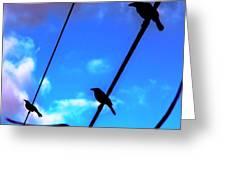 Three Birds Greeting Card