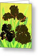 Three Black Irises, Painting Greeting Card