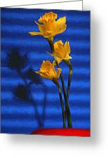 Three Cheers - Yellow Daffodils In A Red Bowl Greeting Card