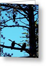 Three Crows In A Tree Greeting Card