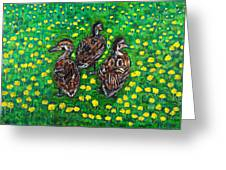 Three Ducklings Greeting Card