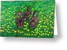 Three Ducklings Greeting Card