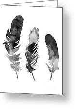 Three Feathers Silhouette Greeting Card