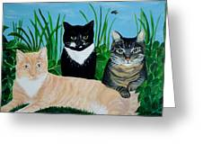 Three Furry Friends Greeting Card