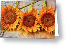 Three Graphic Sunflowers Greeting Card