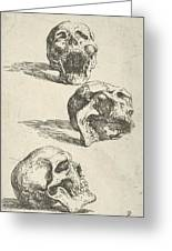 Three Human Skulls Greeting Card