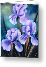 Three Iris Greeting Card