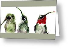 Three Little Hummers Greeting Card