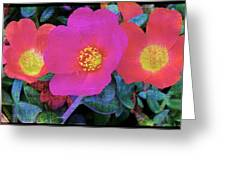Three Lovely Flowers Greeting Card