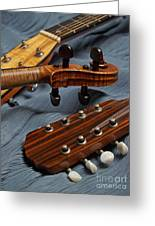 Three Musical Instrument Heads On Blue Greeting Card