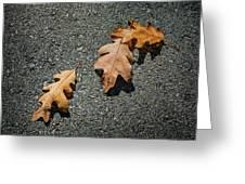 Three Oak Leaves Greeting Card