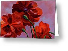 Three Oriental Poppies Greeting Card