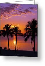 Three Palm Trees At Sunset Greeting Card