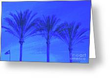 Three Palms And One Flag Greeting Card