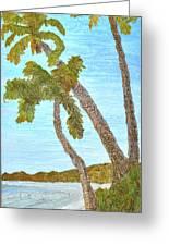 Three Palms At The Beach Greeting Card
