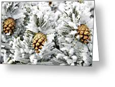 Three Pinecones Greeting Card