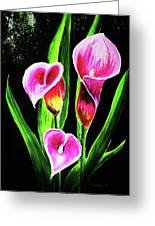 Three Pink Calla Lilies. Greeting Card