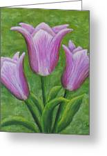 Three Pink Tulips Greeting Card