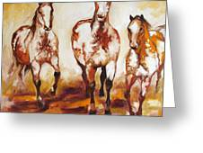 Three Pinto Indian Ponies Greeting Card