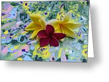 Three Plumeria Flowers Greeting Card