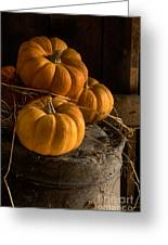 Three Pumpkins On A Bucket Greeting Card