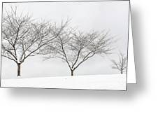 Three Trees In A Snowstorm Greeting Card